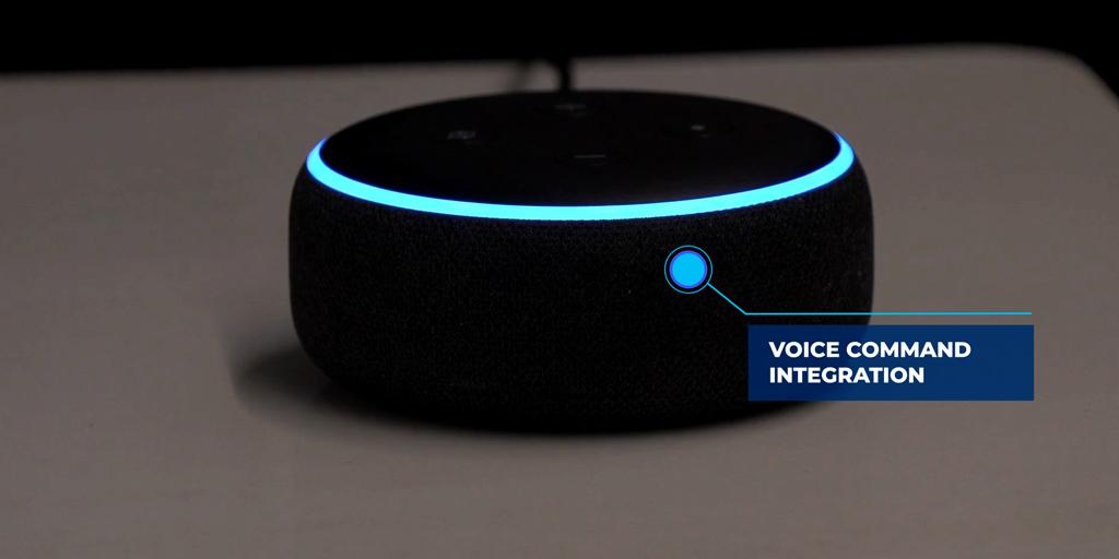 VDA Vocal command integration with Alexia/Volara